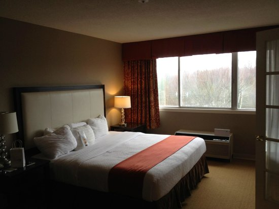 Holiday Inn Hotel & Suites Boston-Peabody: Bedroom
