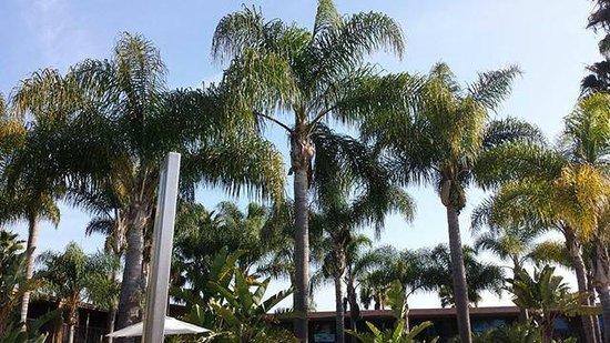 Holiday Inn San Diego-Bayside: Last day:(