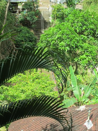 Grya Sari - the Bali Hot Springs Hotel: Very green