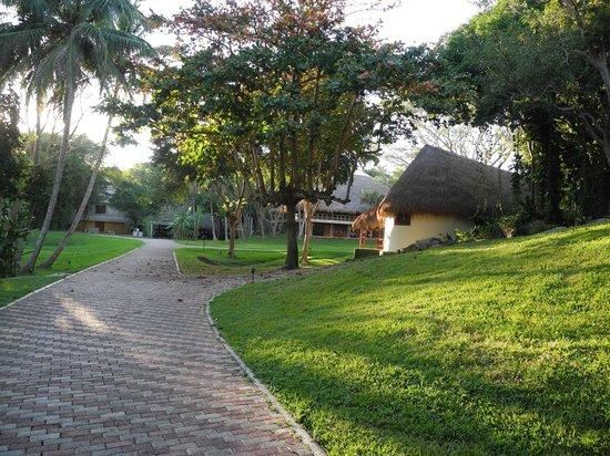 Hotel & Bungalows Mayaland : Bungalows