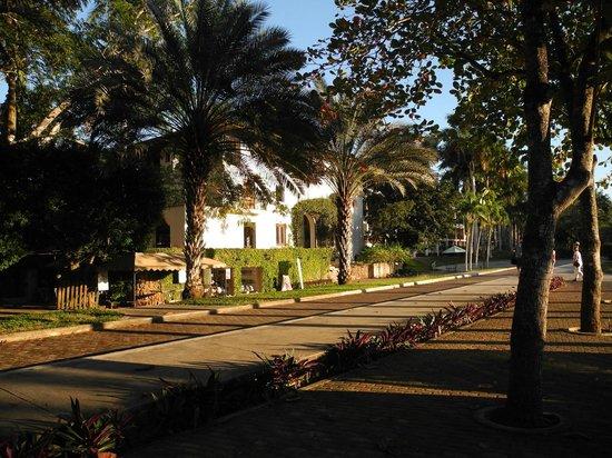Hotel & Bungalows Mayaland : Am Parkplatz