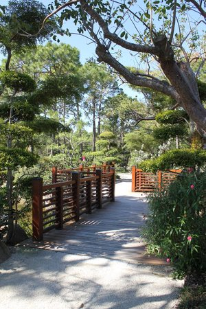 Morikami Museum & Japanese Gardens: Start of 7/8 mile walk