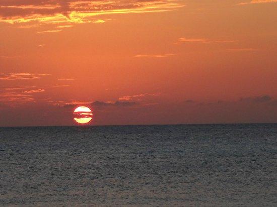 Bohio Dive Resort : Sunset view from the bar