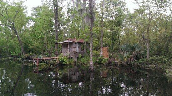 Jean Lafitte Swamp Tours: Swamp shack