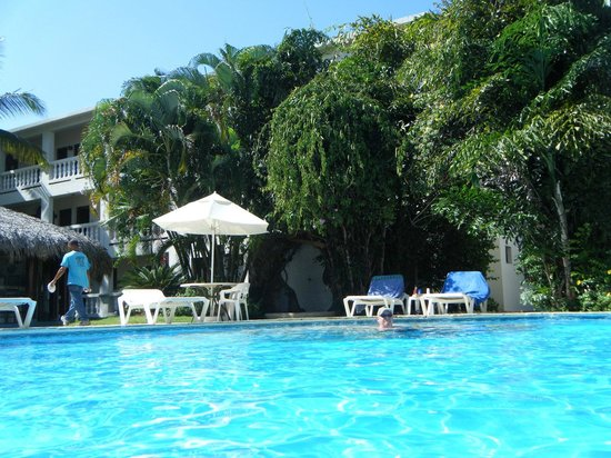 Coconut Palms Resort: Another view from the pool