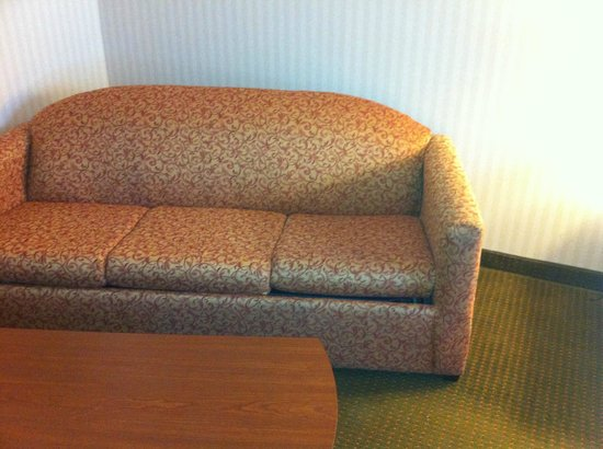 Best Western Plus Saratoga Springs: Very dirty sofa