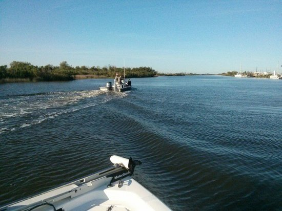 Salty Dog Charters: Heading out of the marsh to catch 'em