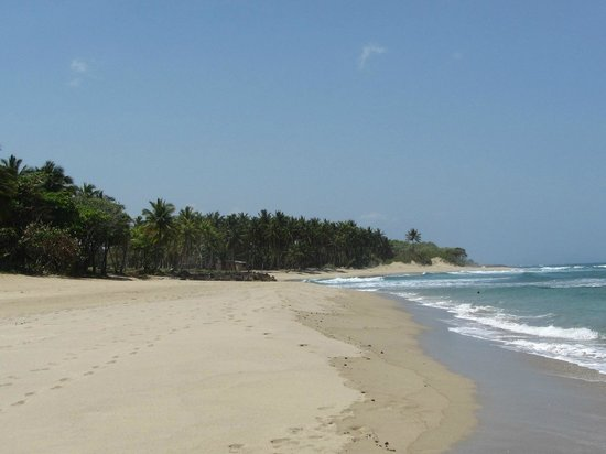 Coconut Palms Resort: Further down from Playa Enquentro beach