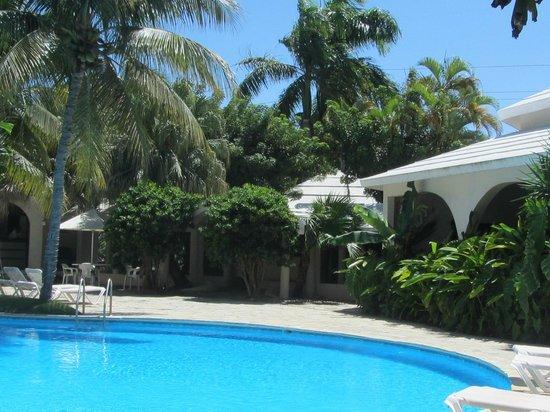 Coconut Palms Resort : Area around the pool