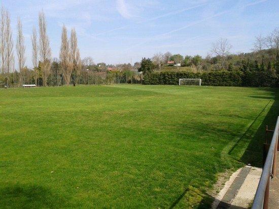 Balletti Park Hotel: Campo da calcio in erba