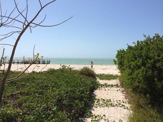 Playa Maya Resorts : Saliendo de la Villa al mar