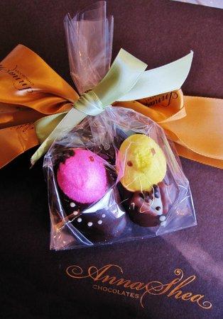 Anna Shea Chocolate Lounge