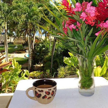Cabarete Palm Beach Condos: Morning Coffee View