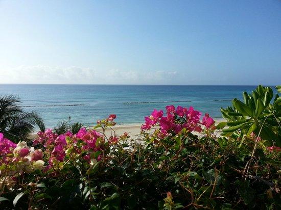 Grand Velas Riviera Maya: View from room.