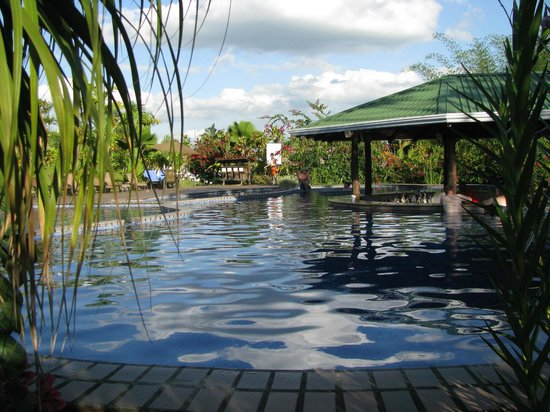 Arenal Manoa Hotel: Pool and Pool Bar