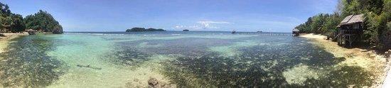Black Marlin Dive Resort : View from the jetty