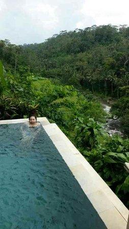 Kupu Kupu Barong Villas and Tree Spa: villa 19-awesome view