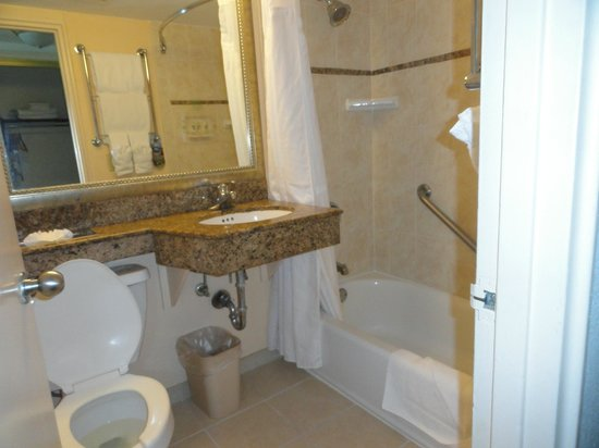 Holiday Inn Port of Miami Downtown: Baño completo