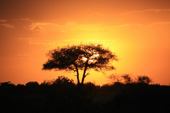 Sarova Mara Game Camp: Photo of sunset just outside the gates