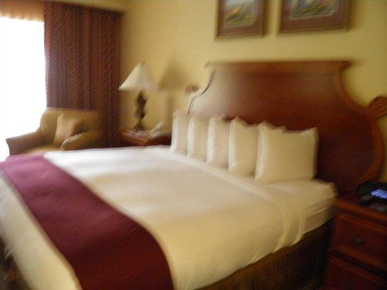 Hilton Grand Vacations at Tuscany Village: habitación