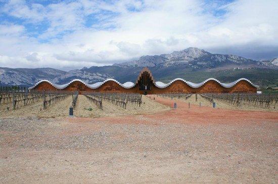 Bodegas Ysios : Bodega de Calatrava