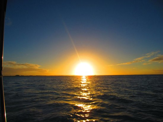 Sun Charters: Beautiful Sunset Cruise