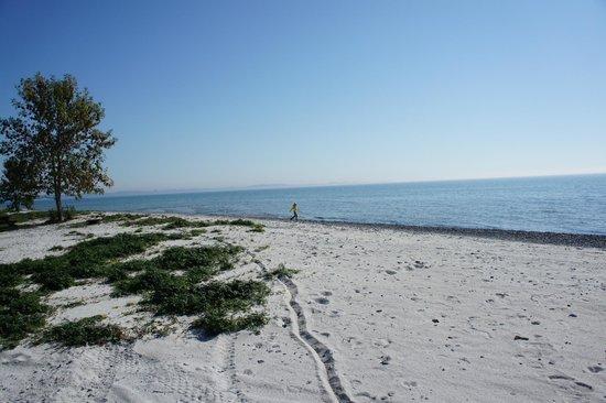 Quinte's Isle Campark: Beach @ Quinte's Isle