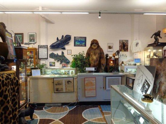 International Cryptozoology Museum: front room