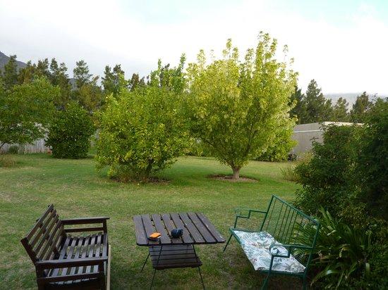 Cape Vue Guest House : Our patio