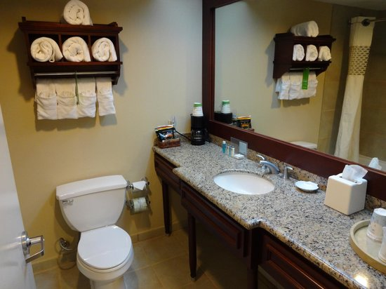 Hampton Inn & Suites San Juan : Bathroom