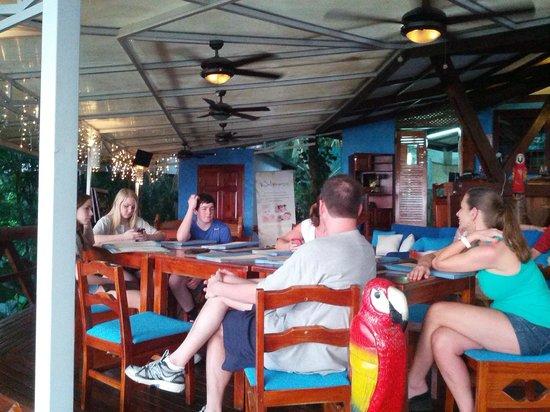 TuleCafe Restaurant: Great food & atmosphere