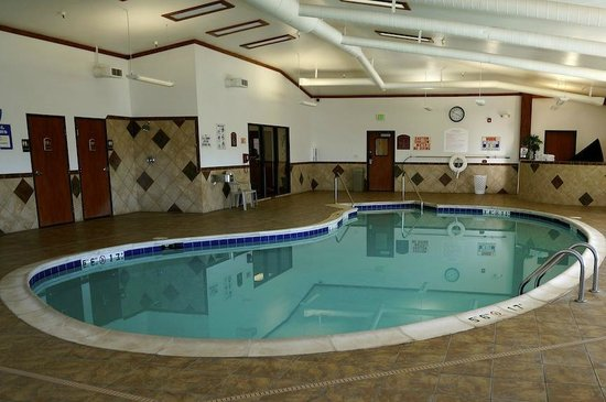 Quality Inn & Suites University : Clean Family Size Pool