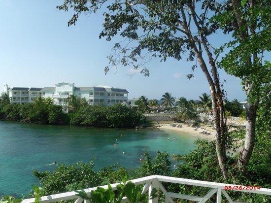 Grand Palladium Jamaica Resort & Spa : Coral Cove Adult Beach