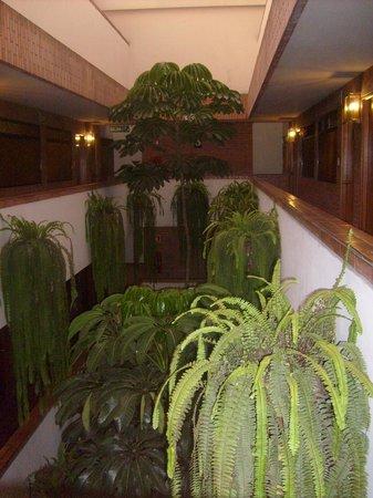 El Doral Apart Hotel : los pasillos que van a las habitaciones