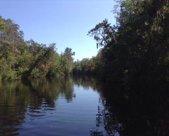 Tidewater Tours: Suwanee river