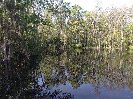 Tidewater Tours: River tour