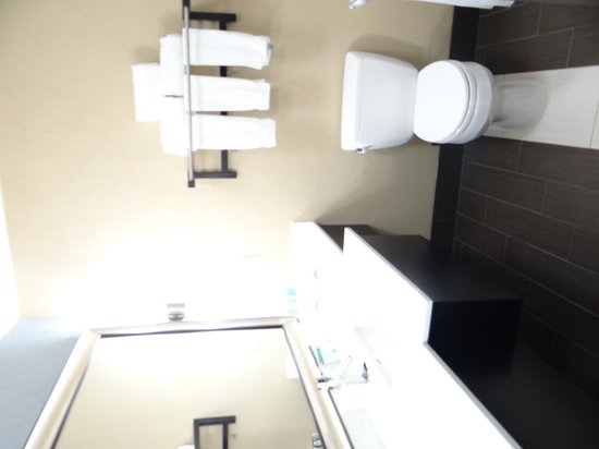 Holiday Inn Express Hotel & Suites Kansas City Airport: Bathroom