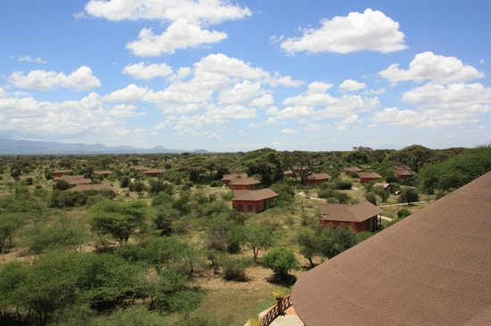 Kilima Safari Camp: View from top of tower
