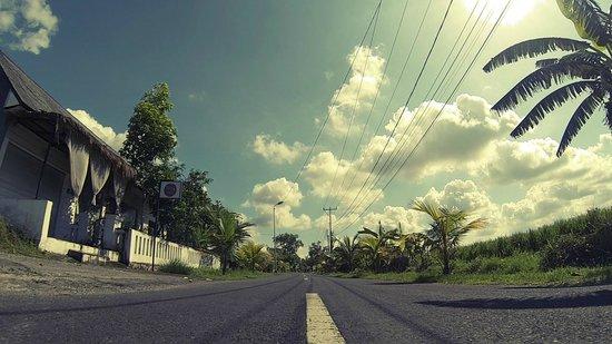 eHomestay Canggu : the street outside ehomestay