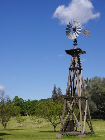 John Muir National Historic Site: Windmill on the grounds
