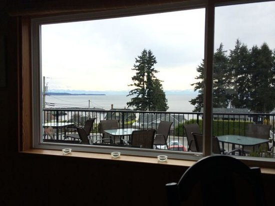 Tree Frog Bistro : View from our table