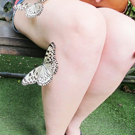 Entopia: Butterflies on me!!!!