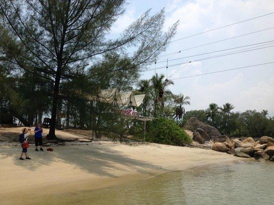 Mega Adventure Park: Landing Area