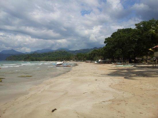 Sheridan Beach Resort and Spa: Fast leerer Strand