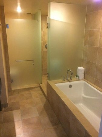 The Beverly Hilton: Bathroom tub and shower side