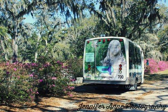Savannah Bonaventure Dash Tours