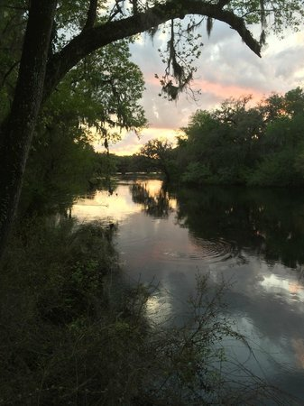Suwannee River State Park: Standing on a trail overlooking Suwannee River at sunset!