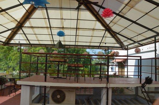 Noah's Ark Homestay: Terrace