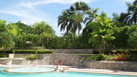Waterfront Cebu City Hotel & Casino: Мини парк около бассейна