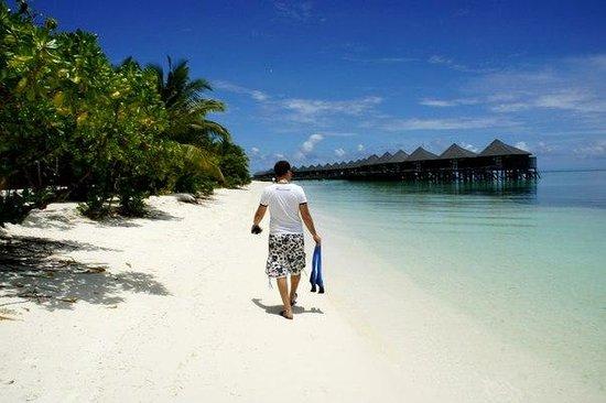 Kuredu Island Resort & Spa: МГ